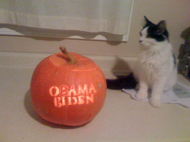 Obama Pumpkin Back